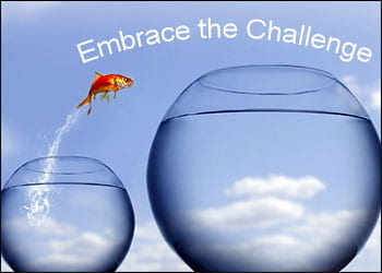 Embrace the Challenge in 2020